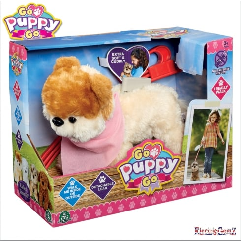 Go Puppy Go Sammy the Pomeranian