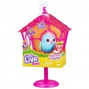 Little Live Pets Sweet Tweets S10 Bird House & Bird - Rainbow Tweet
